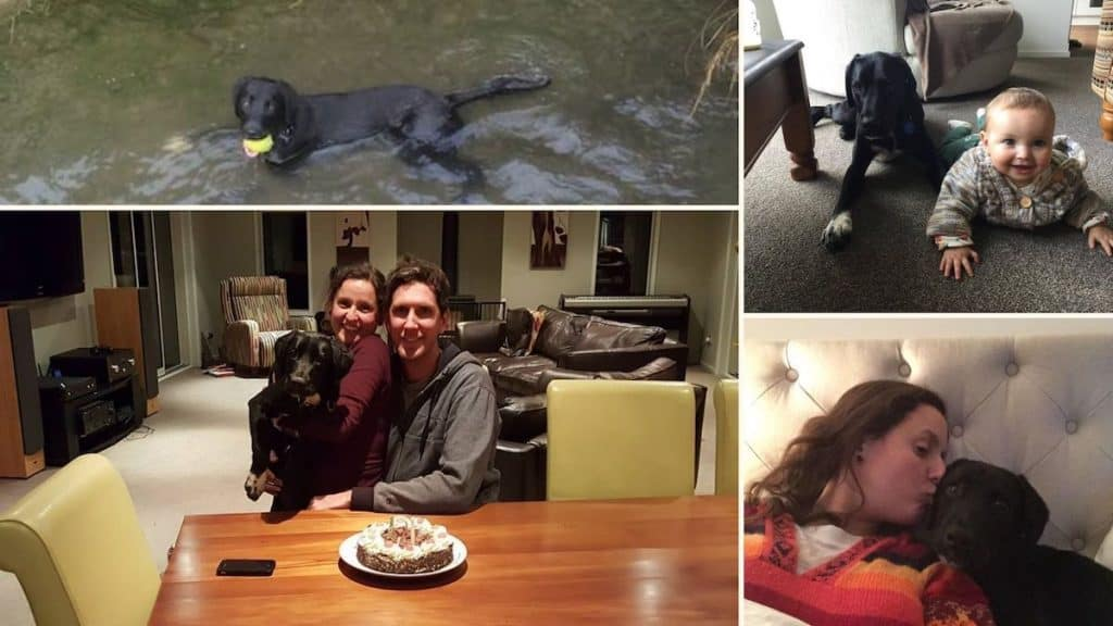 A collage of Pancho's pictures with the family