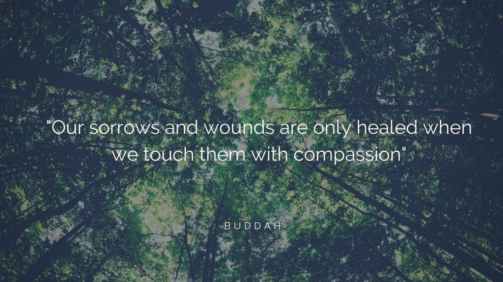 """A blog banner with the words """"Our sorrow and wounds are only healed when we touch them with compassion"""""""